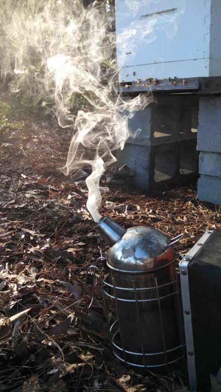 bee smoker.jpg